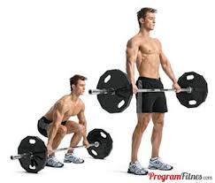 program latihan untuk memperbesar otot bagi pria kurus