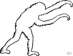 outline coloring pages great outline with picture of ant ant