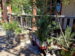 Rock Creek Gardens Temecula Olive Garden Temecula Culturevania