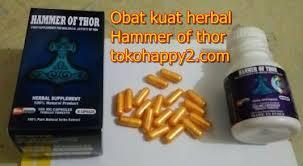 obat kuat herbal hammer thor suplemen untuk keperkasaan pria sejati