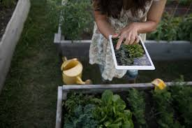the 5 best gardening apps for android and ios digital trends