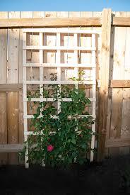 Diy Garden Trellis Ideas Diy Garden Trellis Hometalk