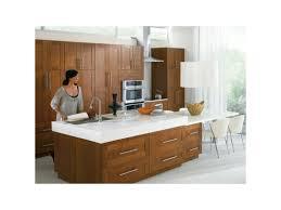 moen level kitchen faucet 7175
