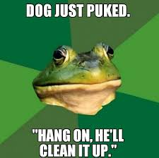 Dog Owner Meme - foul bachelor dog owner meme guy