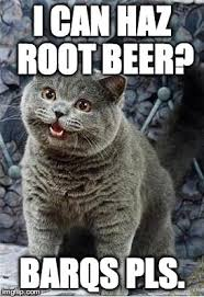 Cheezburger Meme Creator - i can has cheezburger cat imgflip