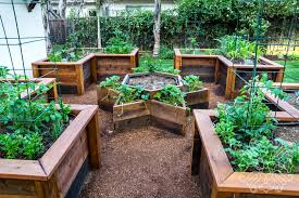 Small Backyard Vegetable Garden by Raised Bed Vegetable Garden Casa Smith Designs