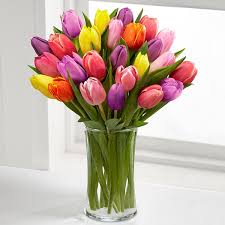 tulip bouquets of color assorted tulip bouquet 20 assorted tulips royal