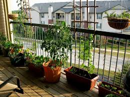 balcony wonderfull small garden balcony ideas