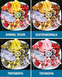 Living With Color Blindness This Is What The World Looks Like To The Colourblind Daily Mail