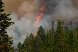 Wild Fires In Oregon State oregon wildfire forces evacuations in prime eclipse zone