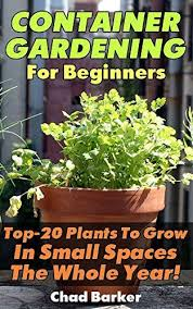 best 20 herb planters ideas on pinterest growing herbs container gardening for beginners top 20 plants to grow in small