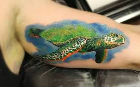 turtle by patrick rosemount tattoo studio aberdeen rebrn com
