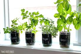 lights to grow herbs indoors growing herb garden indoors indoor herb garden plus home herb garden
