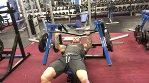 Bench Barbell Row Bench Flat Bench Chest Perfect Pecs Training System Flat Bench