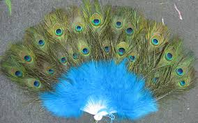 peacock feather fan peacock feather fan eeagal trimming peacock