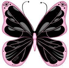 black and pink transparent butterfly clipart gallery