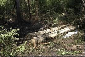 photos ryan dunn death horrific pictures of car crash