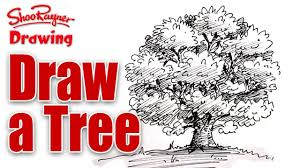 how to draw a tree in pen and ink youtube