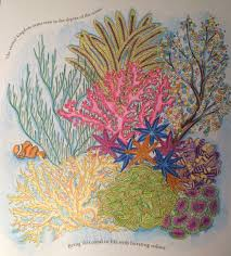 coral reef from millie marotta colouring book color book animal