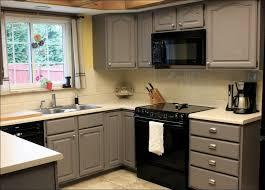 Knotty Pine Kitchen Cabinet Doors by Kitchen Stock Kitchen Cabinets Knotty Pine Kitchen Cabinets