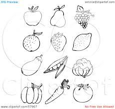 orange fruit clipart fruit outline pencil and in color orange
