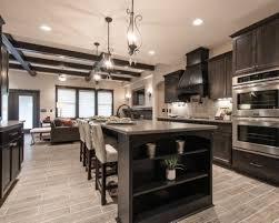Black Kitchen Cabinets Pinterest Dark Cabinet Kitchen Designs Best 25 Dark Kitchen Cabinets Ideas