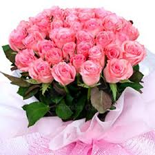 roses online send 24 pink roses to noida online 24 pink roses delivery in