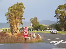 o eucalyptus news north coast journal