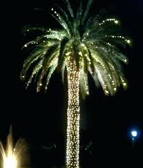 Outdoor Lighted Trees Beautiful Led Lighted Palm Trees For Outside Or Outdoor Lighted