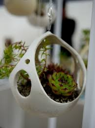 hanging ceramic planter with succulents by kamspots ceramics