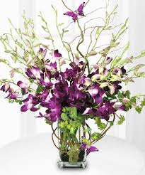orchid delivery butterfly orchid delivery fl same day delivery