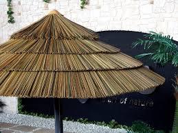 Grass Patio Umbrellas Modern Style Thatch Patio Umbrella With Has U 9622 Kcareesma Info