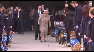 the queen at battersea dogs home youtube