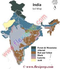 India Geography Map by Ncert Class 10 Geography Solutions Chapter 1 Resources And