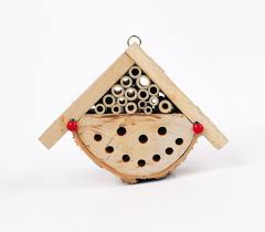this weekend give ladybirds a home of their own notes on