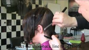theo knoop new hair today time to cut my hair short femke theo knoop 2011 production mpg