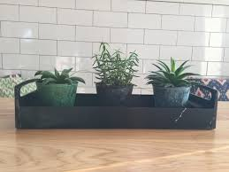 roundup succulent planters and my thoughts on house plants