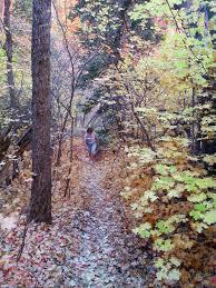 100 tree trail woodlands floor plan saving nebraska u0027s