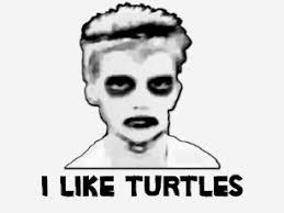 I Like Turtles Meme - i like turtles t shirts shirt designs zazzle