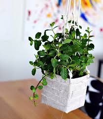 Diy Hanging Planters by 15 Gorgeous Diy Hanging Planter Ideas To Beautify Your Home