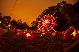 gallery of check out the dazzling pumpkin architecture at new