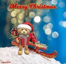 1139 christmas images christmas holidays