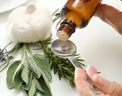 cuisine aux huiles essentielles huile essentielle et cuisine basilic citron origan plemousse