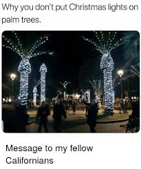 Palm Tree Christmas Lights Funny