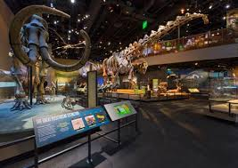 study up for think our roaring fascination with dinosaurs