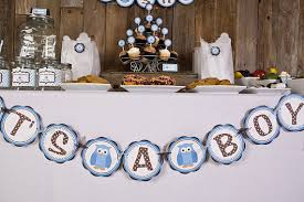 owl themed baby shower decorations extraordinary boy owl baby shower decorations 45 in unique boy