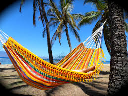 hammocks are good for the soul the mauimama