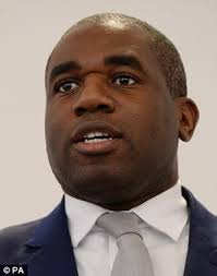 raining men rihanna mp david lammy brands london fire corporate manslaughter daily mail