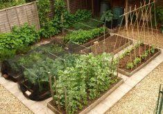 small cottage garden design cori u0026matt garden