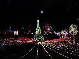 Washington Dc Zoo Lights by Lincoln Park Zoo Christmas Lights Christmas Lights Decoration